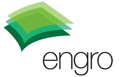 ENGRO CHEMICAL PAKISTAN CO,LTD