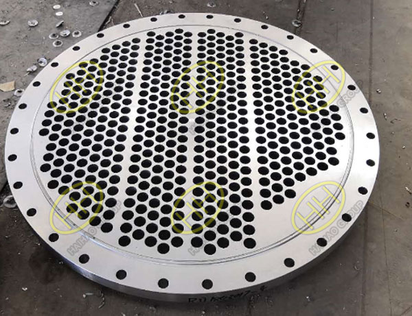 Tube sheet flange